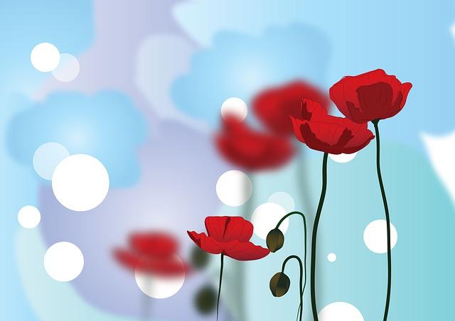 poppy-596569_640